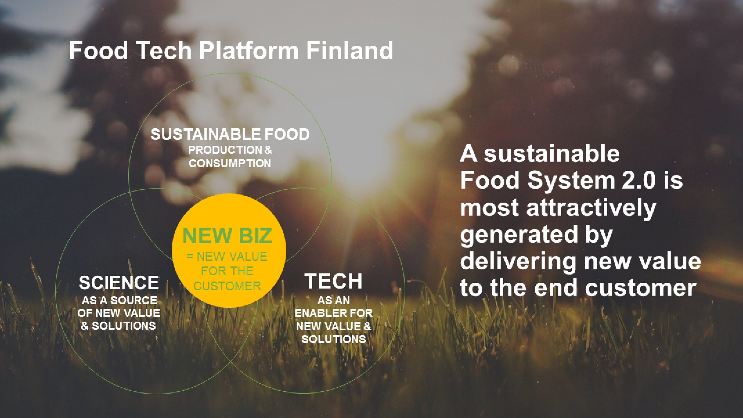 Image: On the background, grass glimmering on the light of sun setting or rising behind some trees. On the front, graphic objects and text. On the left half of the image, under the title Food Tech Platform Finland, three circles with text in them, one on the top and two on the bottom. In the circle on the top, SUSTAINABLE FOOD, production & consumption. In the left cirle of the bottom row, SCIENCE as a source of new value & solutions. In the right cirle of the bottom row, TECH as an enabler for new value & solutions. These three circles are partially on top of each other, forming an union in their middle and there is a fourth circle in the middle of the formation. The middle circle has the text NEW BIZ = new value for the customer. On the right half of the image, A sustainable Food System 2.0 is most attractively generated by delivering new value to the end customer.