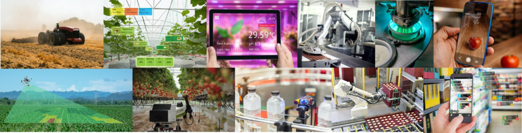 Photonics in agri-food industry